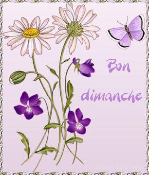 http://auxbellespensees.a.u.pic.centerblog.net/a0c5d084.jpg